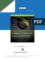 COSO-2015-3LOD (1).en.es