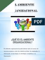 EL AMBIENTE Organizacional