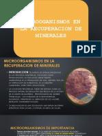Diapo Micro Recuperacion de Minerales (2)