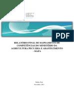 RelatrioFinalMAPA.pdf