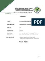 PROCESOS Y TECNOLOGIA DEL SUMINISTRO.docx