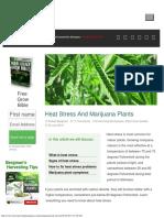 Heat Stress and Marijuana Plants