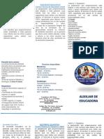 AUXILIAR DE EDUCADORA (1).pptx