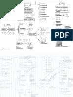 Mapa Auditoria Linda Martinez.pdf