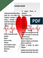 HAS folder.pdf
