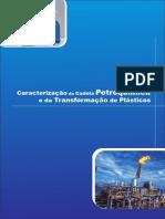 Caracterização da Cadeia Petroquímica e de Transformação de Plásticos.pdf