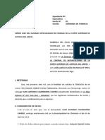 01 - Modelo Escrito de Tenencia 1