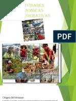 Actividades Economicas Transformativasmejor Para Exponer y Imprimiruu