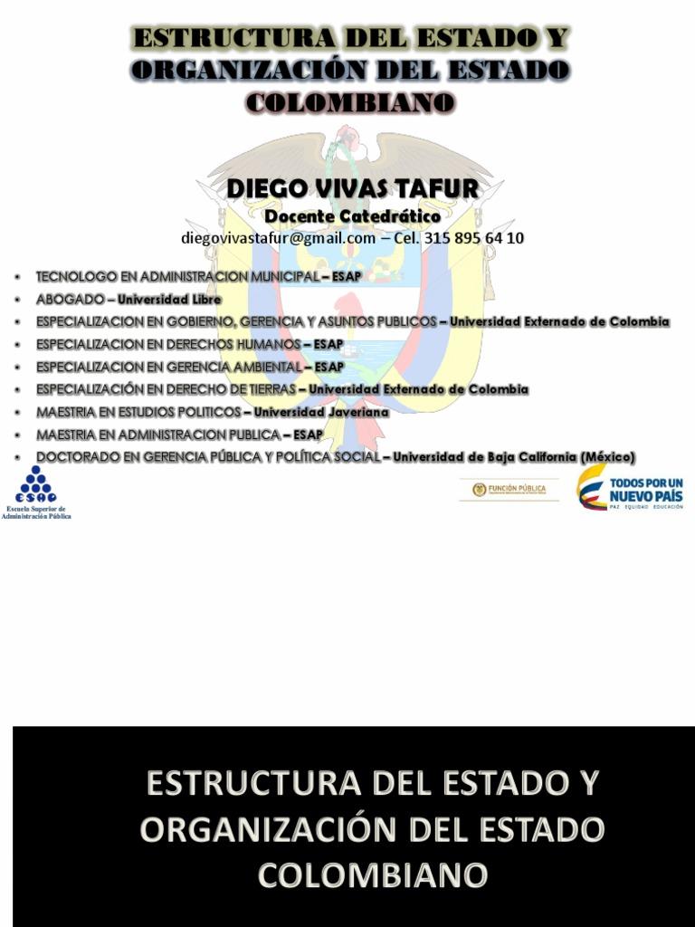 Estructura Del Estado Diego Vivas