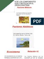 agroecologia.pptx