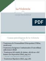 Causas y Efectos Psicológicos de La Violencia