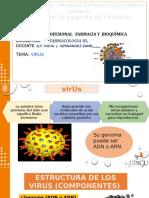 Antivirales Arn