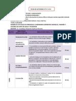 FICH DE ACTIVIDAD N° 015-CORRECCION