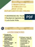 Cadenas Productivas Agroindustriales Universidad (1)