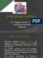 embriologia cardiaca 2018