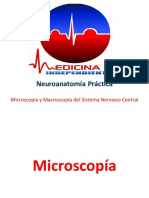Neuroanatomía Práctica - IM.pdf