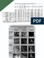 Analisis Estadistica de Centros Pobladosv2007