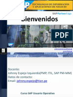 1.Presentacion+SAP+Vision+General