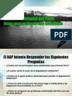 Analisis Ambiental Del Peru