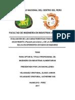 Velasquez Cristobal - TESIS -2017. AGUAYMANTO.pdf