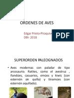 Presentacion Ordenes Aves EP