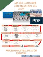 PROCESO INDUSTRIAL DE ATÚN.pdf
