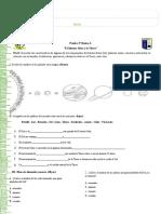 2. 0 prueba de ciencias 3° basico A.doc