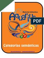 Láminas de categorías semánticas.pdf