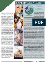 Vivisection, Lesson in Futility