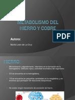 Metabolismo Del Hierro.