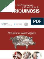 Presentacion Triquinosis
