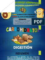 Carbohidratos-Digestión