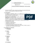 PRÁCTICA N 3 Lacteos.doc