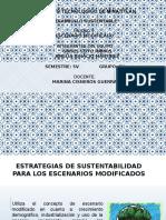 Estrategias de Sustentabilidad Para Los Escenarios Modificados