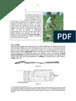 281  Algodón.pdf