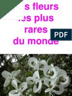 Les fleurs les plus rares du monde.pdf