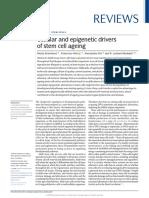 Epigenetica Stem Cell