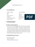 Informe Psicológico Eysenck Personal