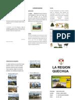 Triptico Rergion Quechua