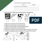 TALLER EVALUATIVO DE  CIENCIAS NATURALES 2 periodo grado 4.docx