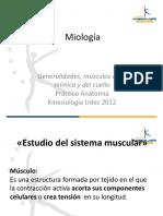 Miología Cara y Cuello
