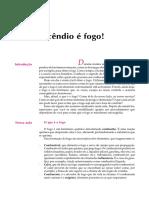 04 Acidente é Fogo!.pdf