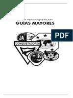 Guia Mayor