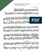 Scherzo Allegro Molto Vivace