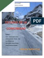 ESTUDIO DE COMUNIDAD - 205.docx