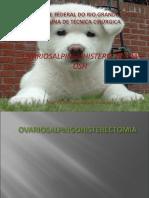 AULA OSH Prof. Emerson 1.pdf