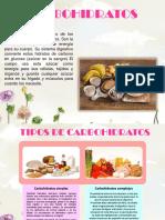 carbohidratos geria