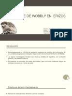 Sindrome de Wobbly Erizos