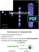 Microtúbulos.pptx