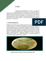 microbiologia de suelos.doc